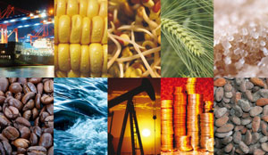 Commodity Market 2013 is going to affect your market