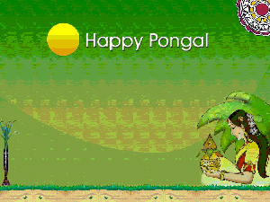 Pongal is the harvest festival of India