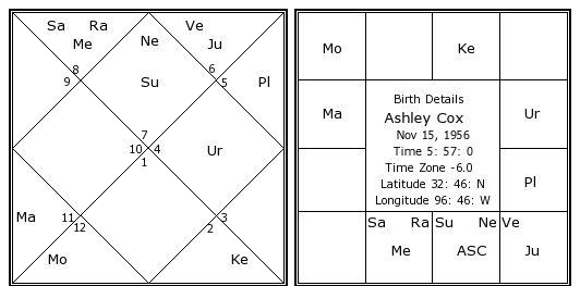 Today's Free Daily Horoscope from Tarot.com