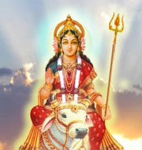 Devi Shailputri is Worshiped  on the first day of Navratri festival