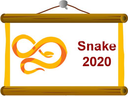 snake Horoscope 2020 Predictions